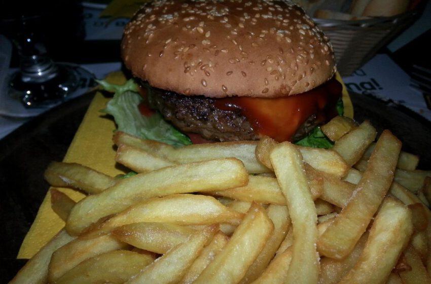 Hamburger di angus – WOOD PUB – Gaglianico