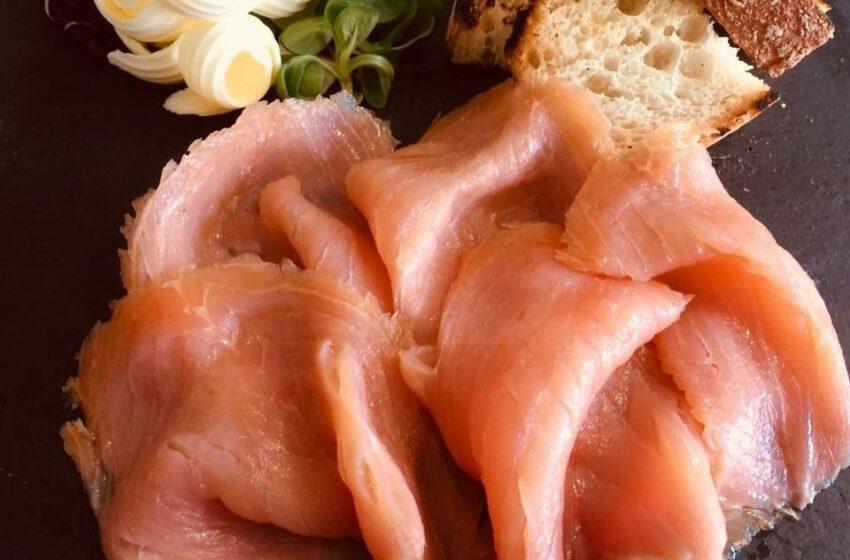 Salmone norvegese-IL VIGNETO – Gattinara